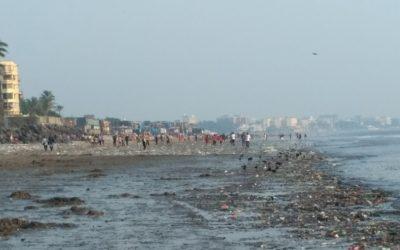 This Mumbai lawyer inspired a massive beach cleanup—Public Radio International