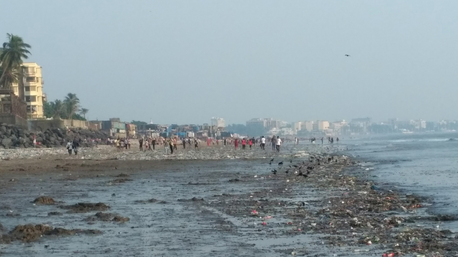 This Mumbai lawyer inspired a massive beach cleanup—Public Radio International